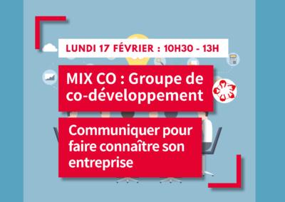 MIX CO : Groupe de co-développement